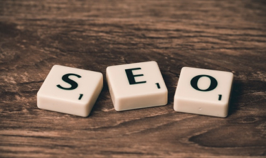 Профессиональное продвижение сайта в поисковых системах